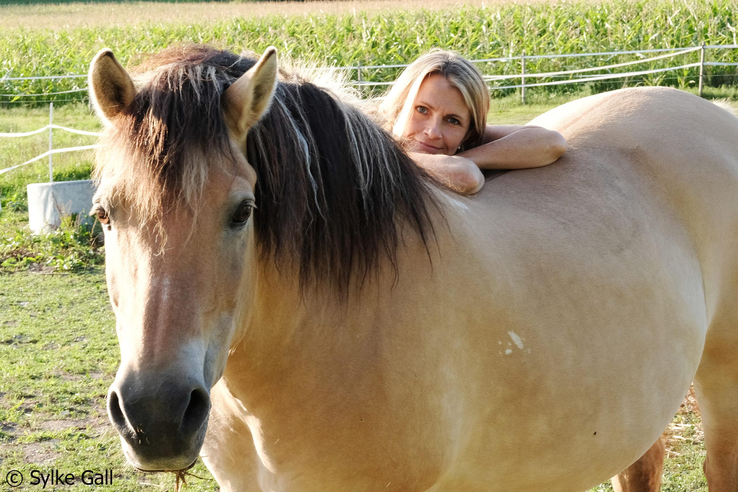 Alexandra Stross und Pferde